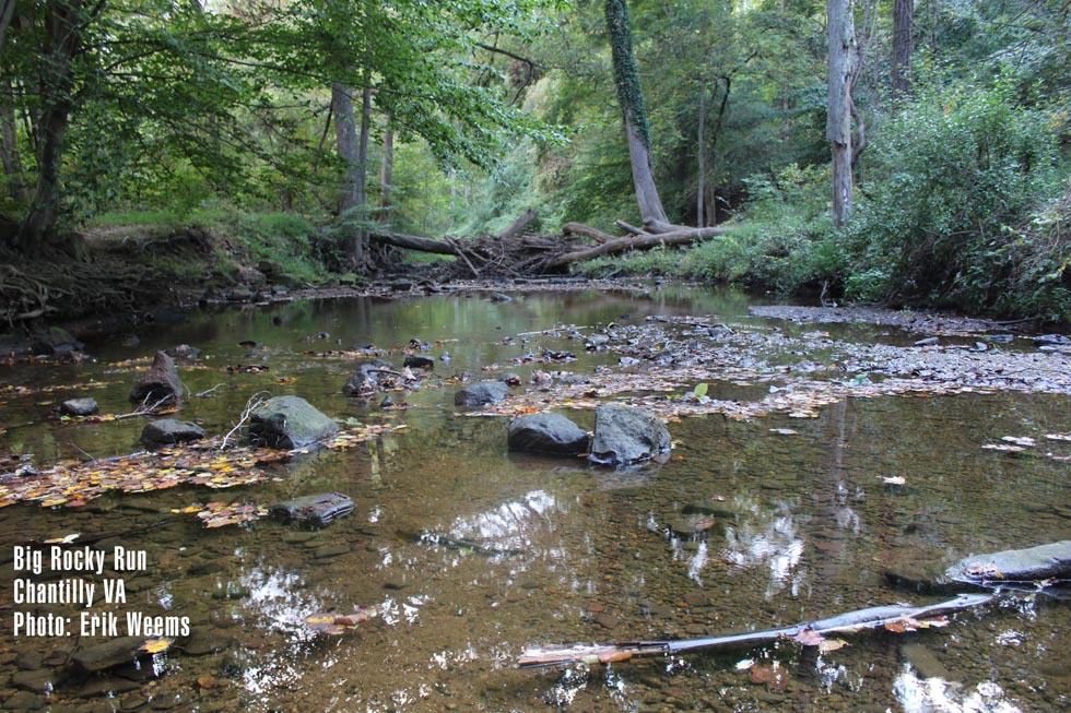 Big Rocky Run - Chantilly Virginia