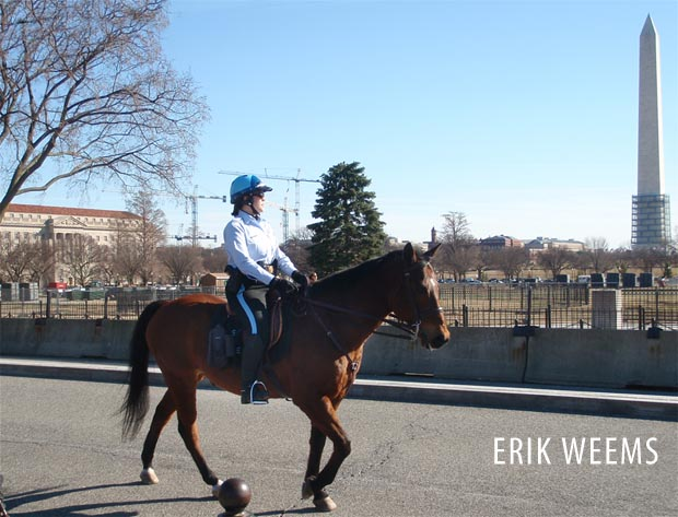 Mounted White House Police - Washington DC