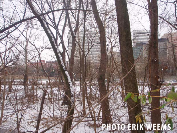 Arlington in SNow - Virginia - Roosevelt Island