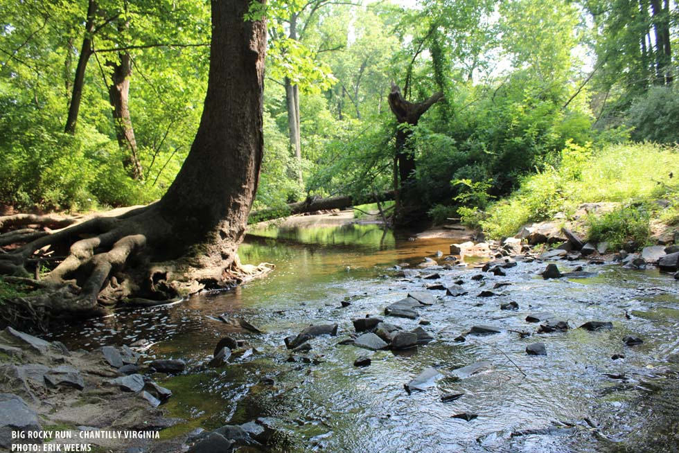 Big Rocky Run - Chantilly Virginia - photo by Erik Weems